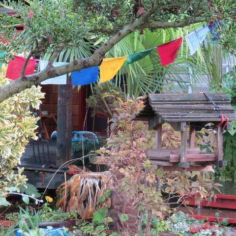 Prayer flags in November